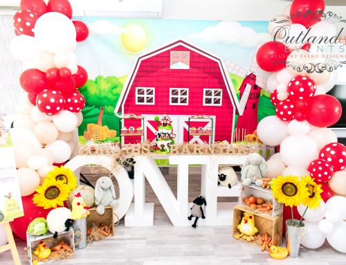 Barnyard 1st Birthday Home Celebration